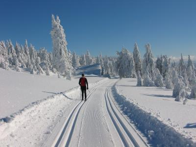 The Jizera Mountains Arterial Cross-Country Skiing Network